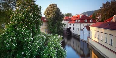 Eine Weltreise durch die Tschechische Republik