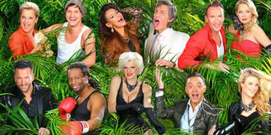 Das sind die 11 Dschungel-Stars