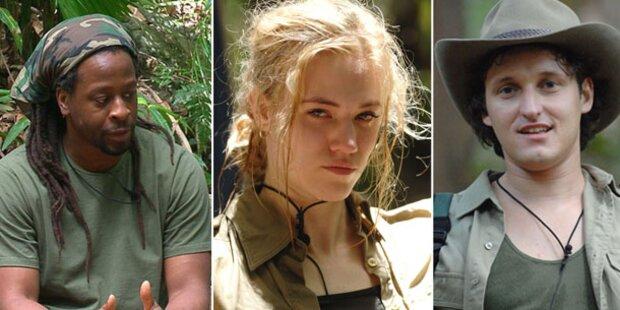 Dschungelcamp: Wer soll als Erster gehen?