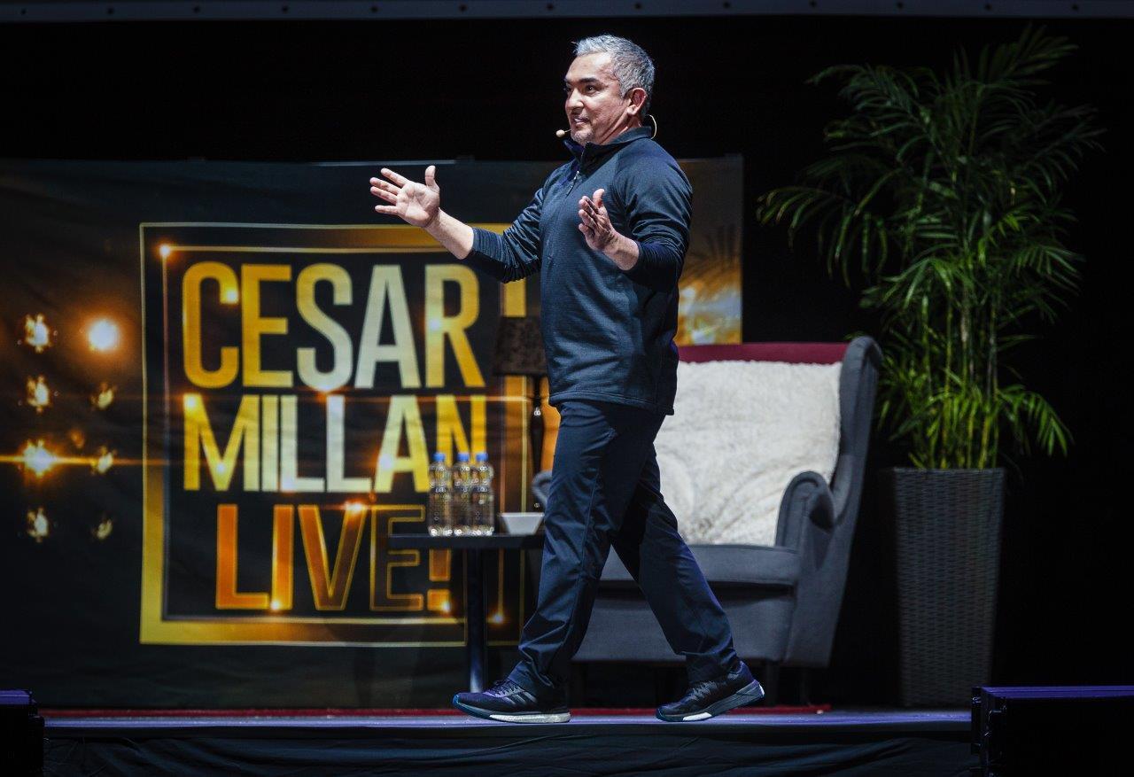 Cesar Milan