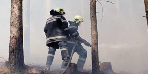 Wald und Wiese standen in Flammen