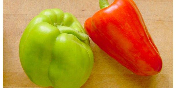Spanische Paprika hochgiftig