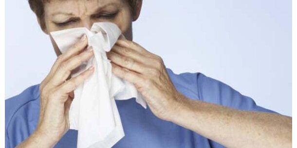 Schnupfen-Virus macht dick