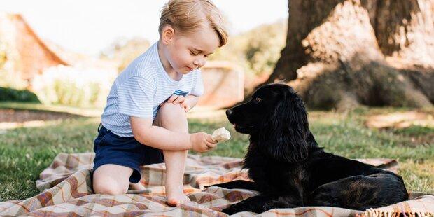 Prinz George: Süße Fotos zum Geburtstag