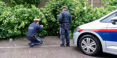 Mord-Alarm in NÖ: 52-Jährige tot aufgefunden