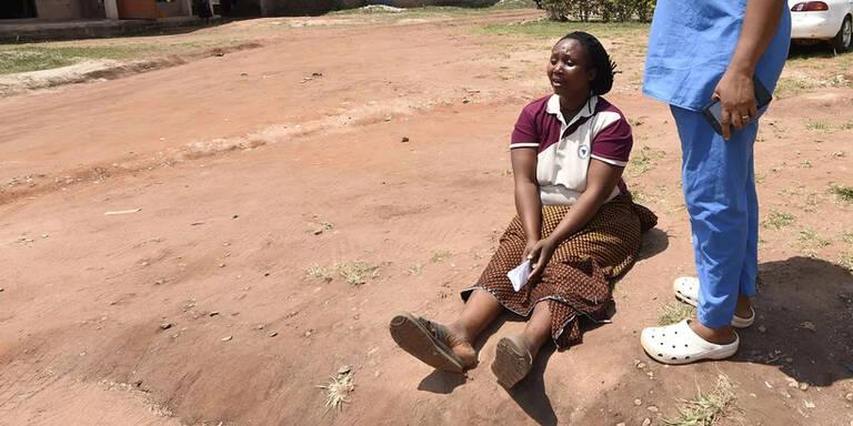 Nach Ausbruch von Lassafieber in Nigeria: Inzwischen 41 Tote