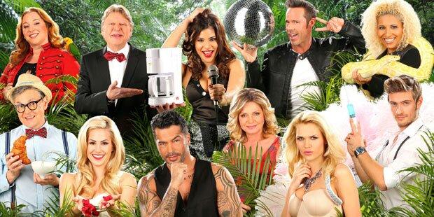 Wer wird Dschungelkönig 2015?