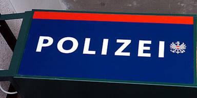 Alkolenker fuhr mit 1,8 Promille zur Polizei