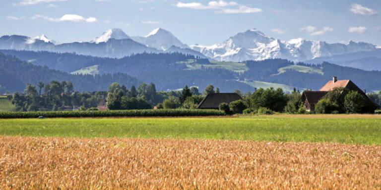 Schweizer werfen Österreicher raus