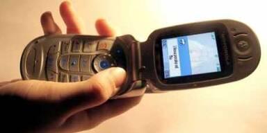 MADONNAs Handy-Knigge für Beruf