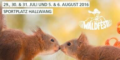 Hallwanger Waldfest