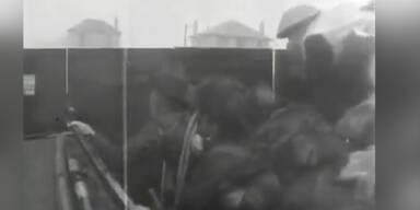 Landung der Alliierten in der Normandie am 6. Juni 1944