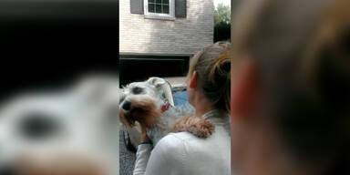 Hund stirbt fast vor Freude