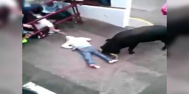 Bulle erwischt Stierlauf-Zuseher