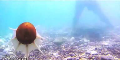 Robo-Oktopus schwimmt im Meer