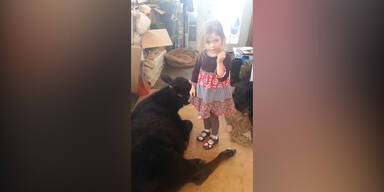 5-Jährige lässt Kuh ins Haus