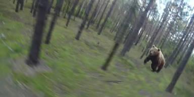 Hungriger Bär verfolgt Mountainbiker