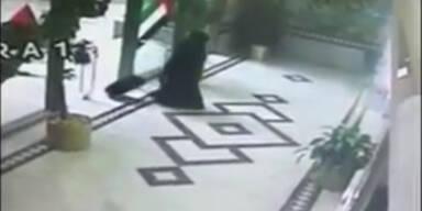 Sicherheitskameras filmten die Bombenlegung