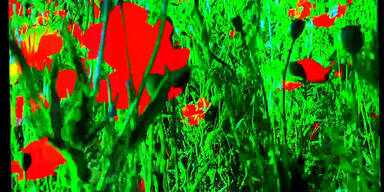 'Adieu en langage' von Jean-Luc Godard