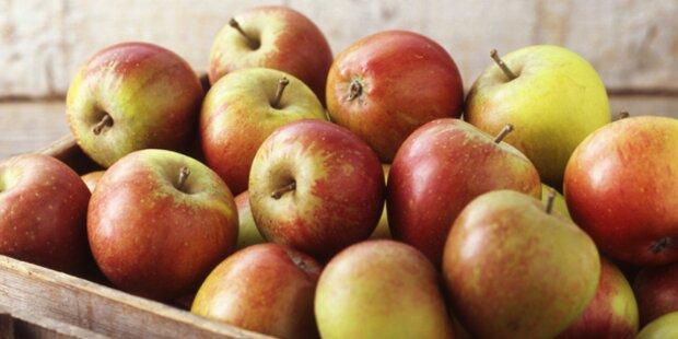 Bio-Obst für Wiener Schulen
