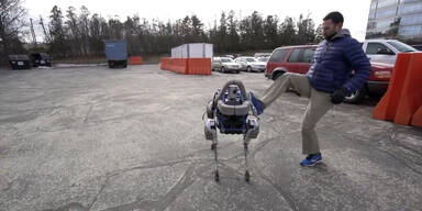 Hunde-Roboter 'Spot' wird vorgestellt
