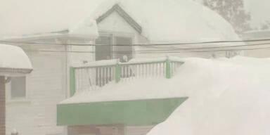 USA bibbert unter Schnee und Eis
