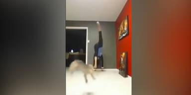 Frau kickt Mini-Hund durch die Luft