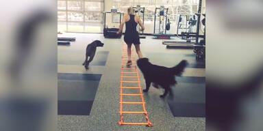Lindsay Vonn: Training mit ihren Hunden