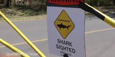 Vor diesem Strand tötete ein Hai eine Schwimmerin