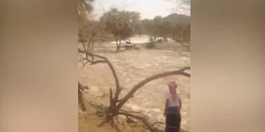 Pkw rettet sich aus Fluss