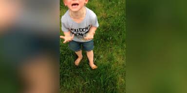 Wutanfall: Kleinkind tritt in Hundekot