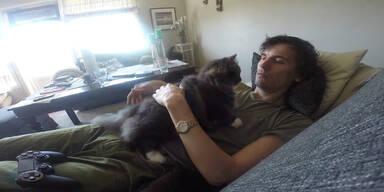 Katze hält Herrchen vom Spielen ab