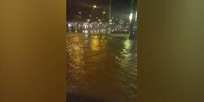 Floridsdorfer Spitz unter Wasser