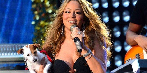 Carey: Luxusurlaub für ihre Hunde