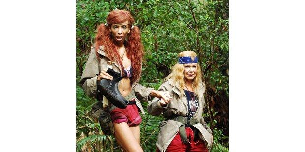 Dschungel-Prüfung: Nur ein Stern für Nico