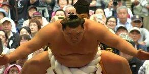 Sumo-Ringer Frühjahrswettkampf