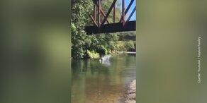 Vierjähriger von Brücke in Fluss geworfen