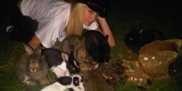 Paris Hilton rettet 20 Häschen das Leben