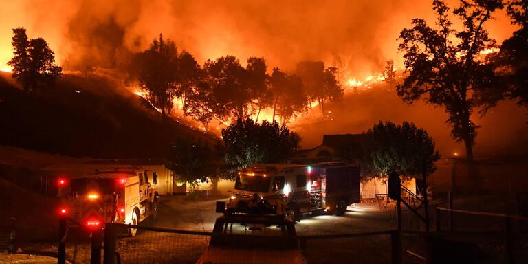 Feuer-Tornados Vorboten für Klima-Hölle