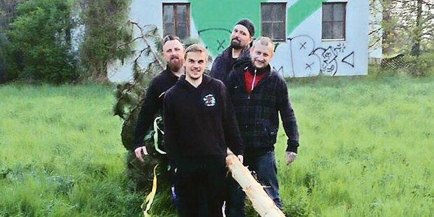 Maibaum-Diebe sorgen für Zoff in Donaustadt