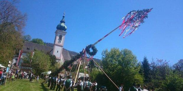 Die Salzburger Maibaumfeste 2019