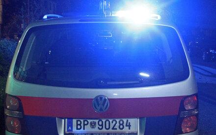 Dieb attackiert Baumarkt-Detektiv mit Eisengestell
