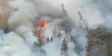Kalifornien: Lagerfeuer löste Waldbrand aus