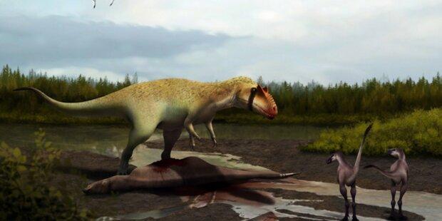 Dinosaurier entdeckt: Stärker als der T-Rex
