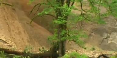 Erdrutsch lässt Fluss über die Ufer treten
