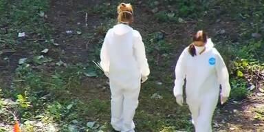 Neues Massengrab in Mexiko entdeckt