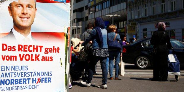 Plakat-Diebe: Hofer-Plakate gestohlen