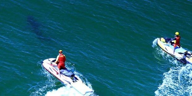 17-jähriger Surfer von Hai attackiert