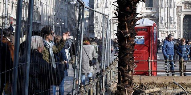 Aus Wut über Ausländer: Palmen in Mailand angezündet