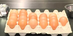 Eier Special - damit kein Osterei verschwendet wird